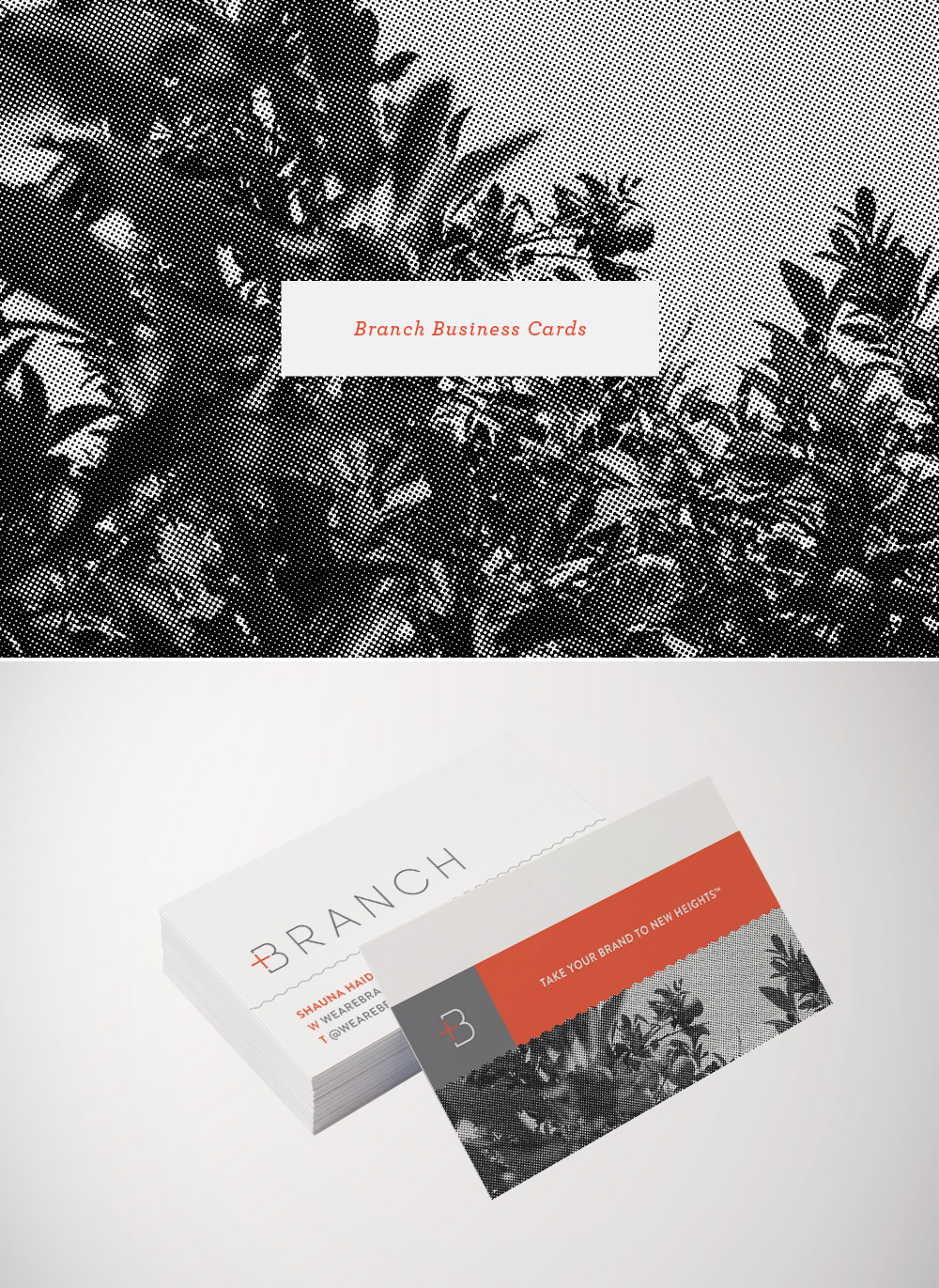 Branch Business Cards
