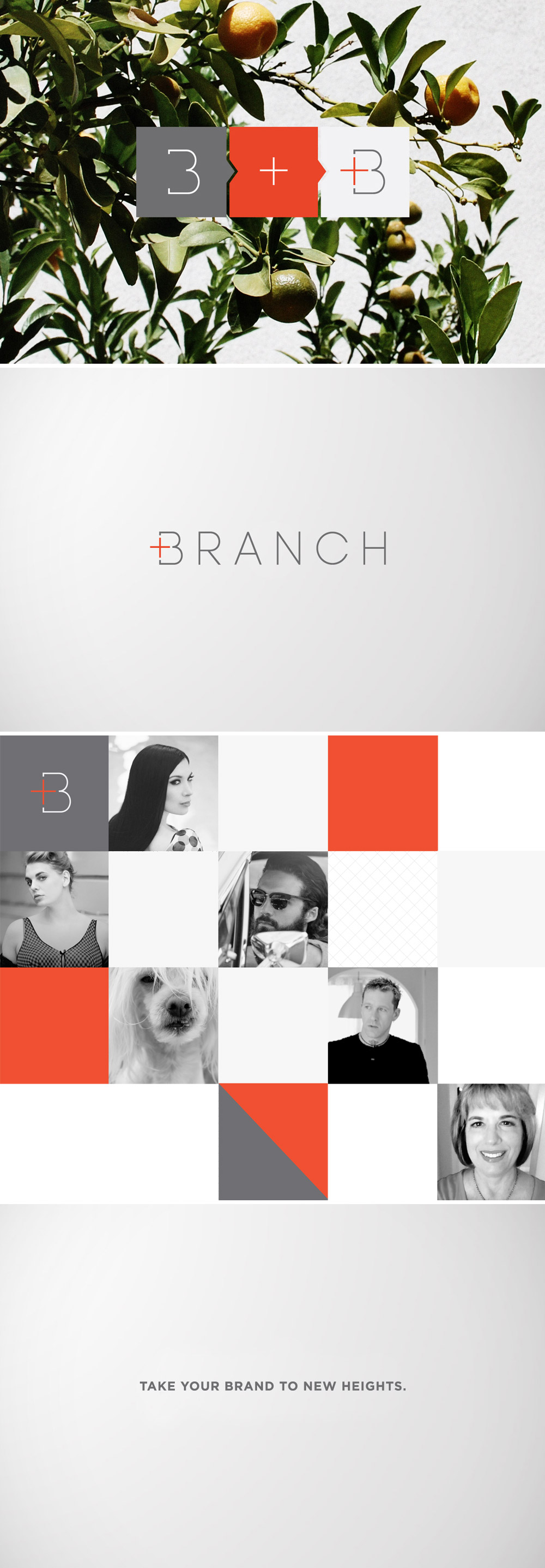 Branch | Happy Branchiversary! One Year Of Running A Design Studio Plus 5 Tips For Small Businesses