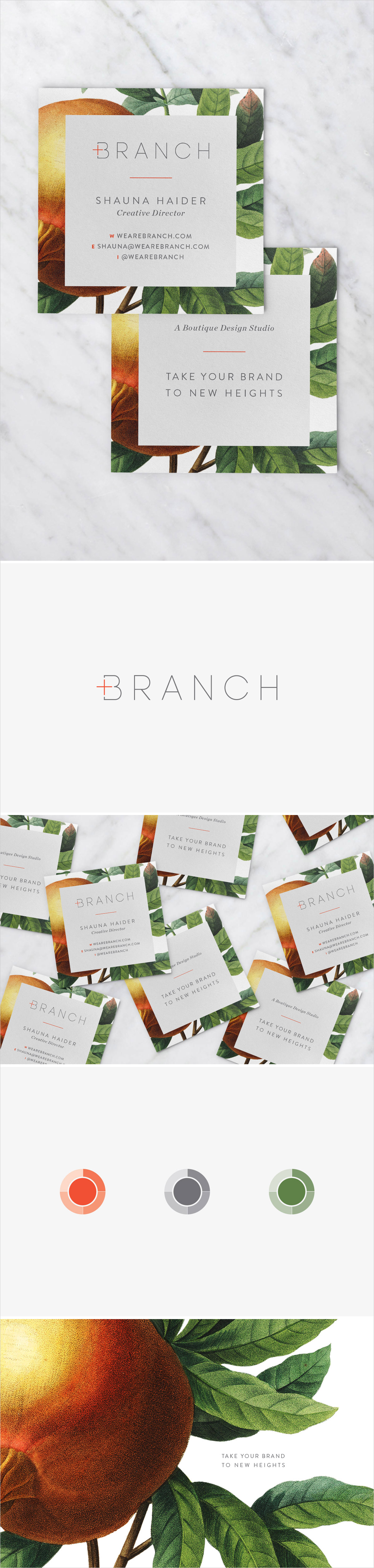 Branch | Brand Refresh