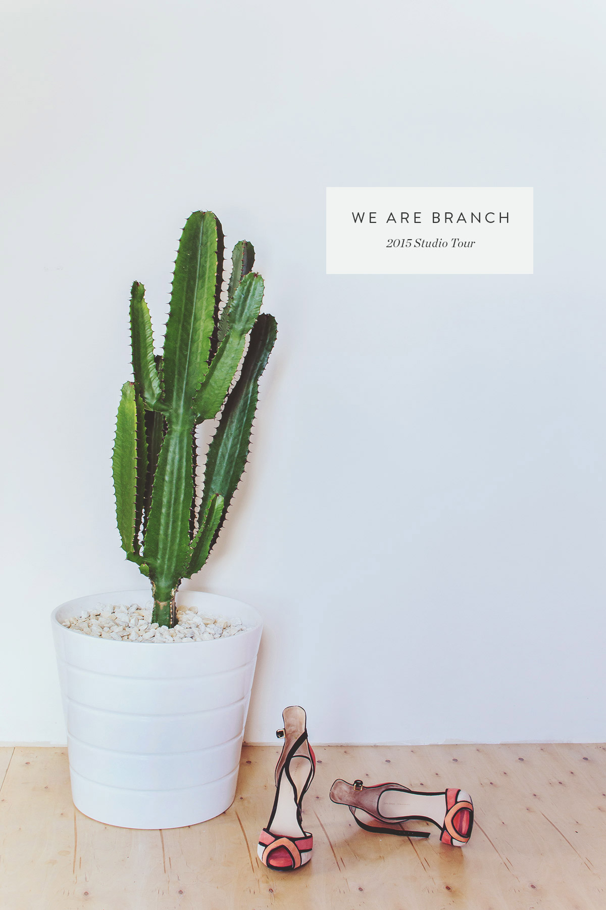 Inside Branch: A Studio Tour